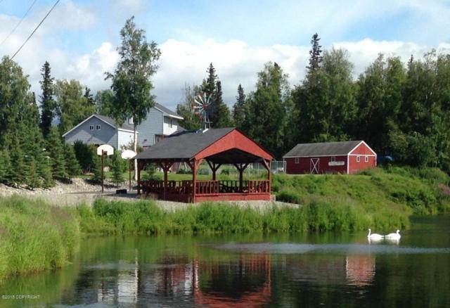4891 N Palmer Fishhook Road, Palmer, AK 99645 (MLS #18-2462) :: RMG Real Estate Network | Keller Williams Realty Alaska Group