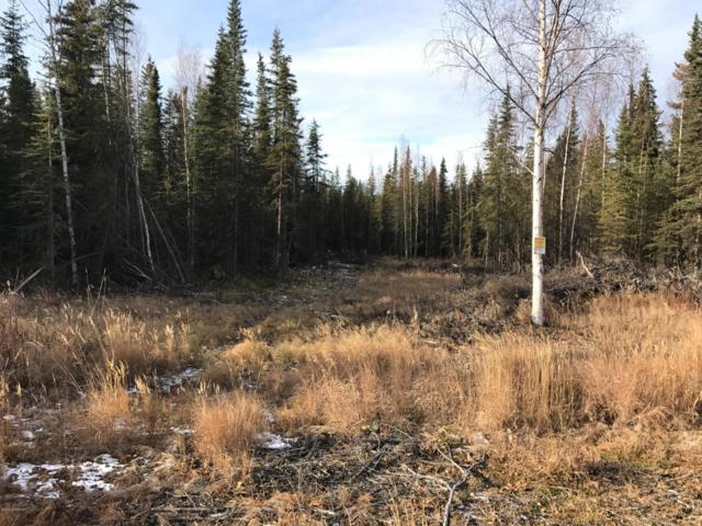 L24B Stone Hollow Drive, Soldotna, AK 99669 (MLS #18-2512) :: RMG Real Estate Network | Keller Williams Realty Alaska Group