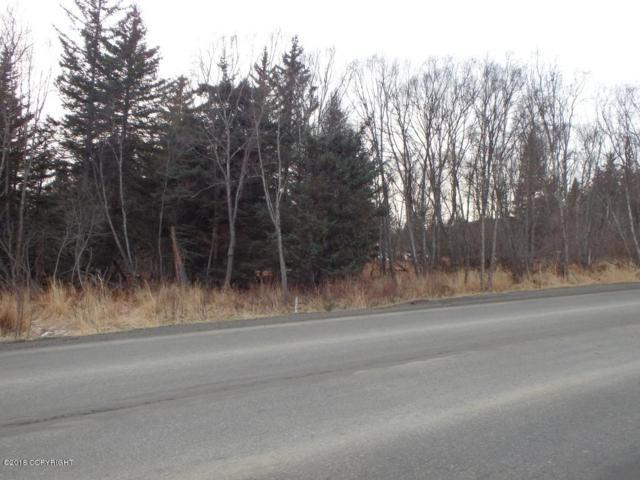 3815 West Hill Road, Homer, AK 99603 (MLS #18-2542) :: Northern Edge Real Estate, LLC