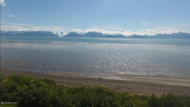 3815 E End Road, Homer, AK 99603 (MLS #18-2552) :: RMG Real Estate Network | Keller Williams Realty Alaska Group