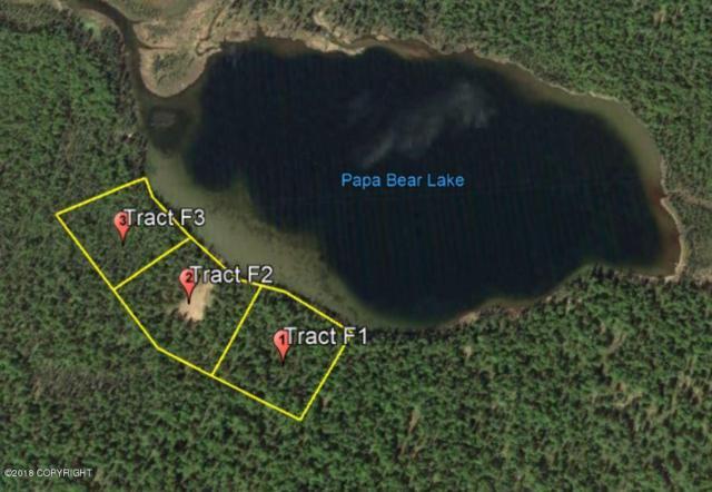 Tr F3 No Road, Talkeetna, AK 99676 (MLS #18-2557) :: Northern Edge Real Estate, LLC