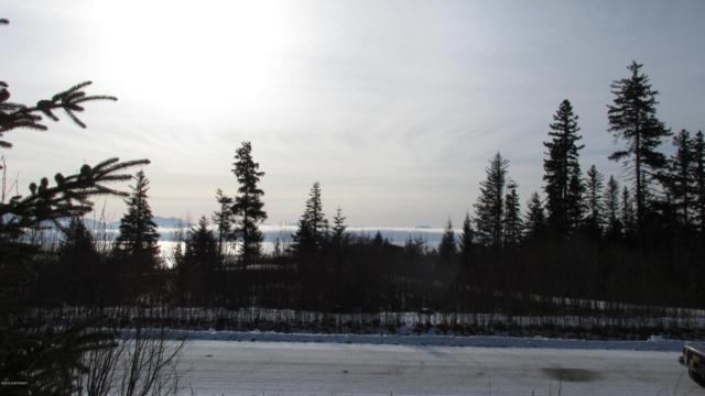 2565 Highland Drive, Homer, AK 99603 (MLS #18-2636) :: Northern Edge Real Estate, LLC