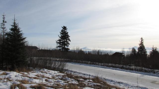 2580 Highland Drive, Homer, AK 99603 (MLS #18-2637) :: Northern Edge Real Estate, LLC