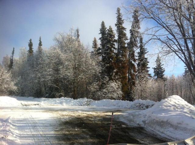 17416 W Marion Drive, Big Lake, AK 99652 (MLS #18-2660) :: Northern Edge Real Estate, LLC