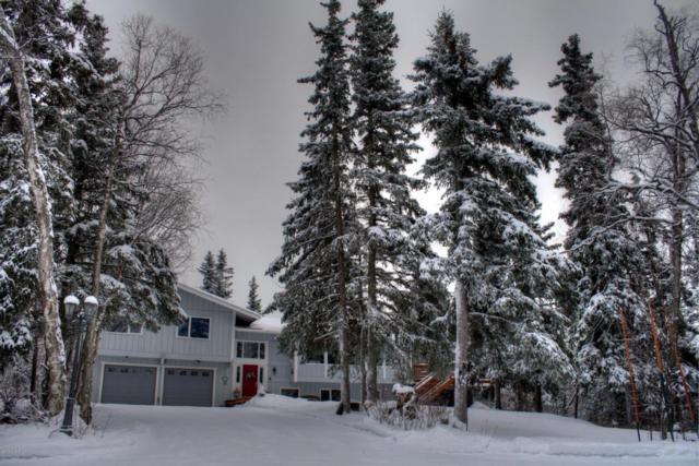 12601 Elmore Road, Anchorage, AK 99516 (MLS #18-2691) :: Northern Edge Real Estate, LLC