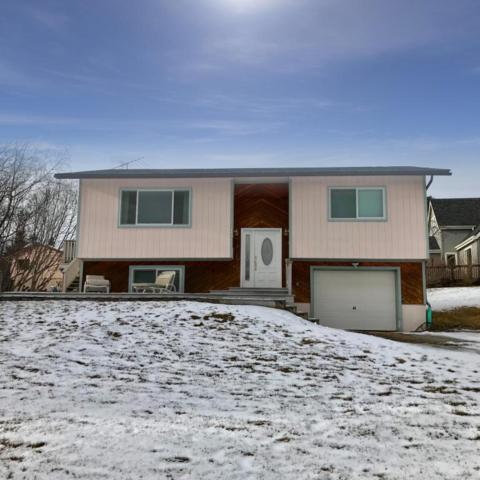 4781 Shannon Court, Homer, AK 99603 (MLS #18-2783) :: Channer Realty Group