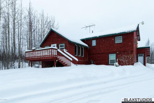 1388 N Beaver Lake Road, Wasilla, AK 99654 (MLS #18-3005) :: Synergy Home Team