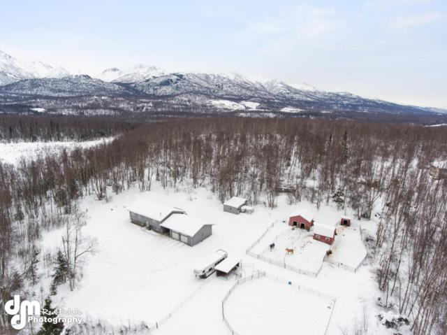 20230 Tenada Avenue, Chugiak, AK 99567 (MLS #18-3172) :: Northern Edge Real Estate, LLC
