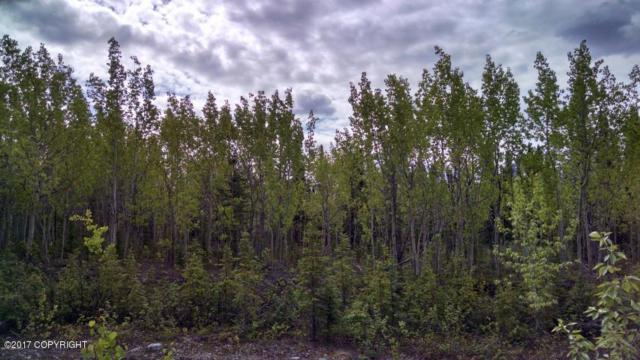 L14 Surprise Lake Lane, Copper Center, AK 99573 (MLS #18-3202) :: Real Estate eXchange
