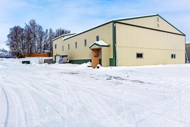 6601 E Skyhawk Circle, Wasilla, AK 99654 (MLS #18-3378) :: Channer Realty Group