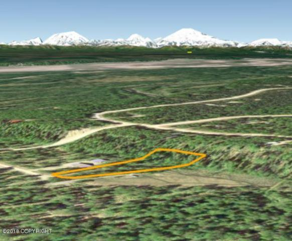 14575 E Prairie Circle, Willow, AK 99688 (MLS #18-3407) :: Synergy Home Team