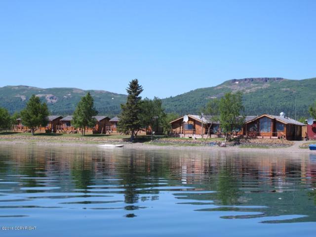0 Six Mile Lake, Nondalton, AK 99640 (MLS #18-3621) :: Channer Realty Group