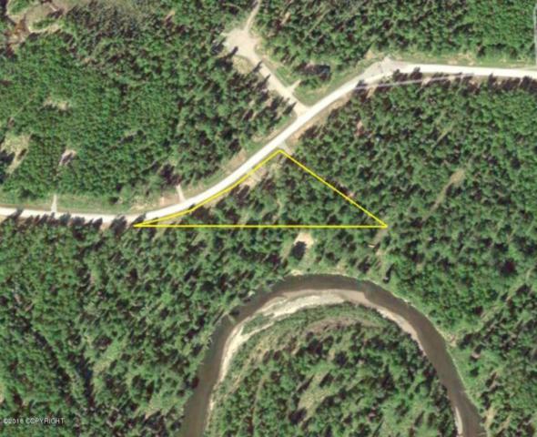 15439 E Audubon Drive, Willow, AK 99694 (MLS #18-3699) :: Channer Realty Group
