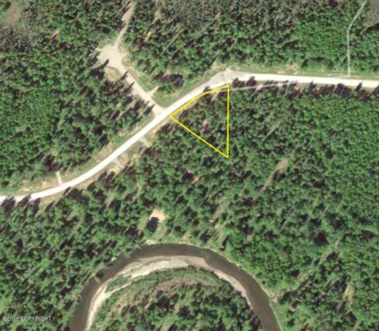 15553 E Audubon Drive, Willow, AK 99694 (MLS #18-3702) :: Channer Realty Group