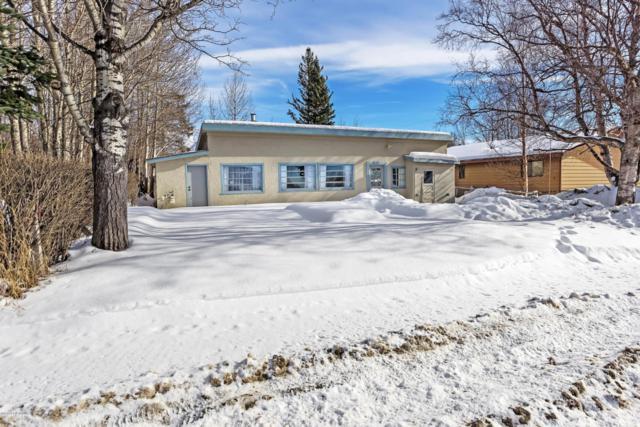 673 S Gulkana Street, Palmer, AK 99645 (MLS #18-3737) :: Real Estate eXchange