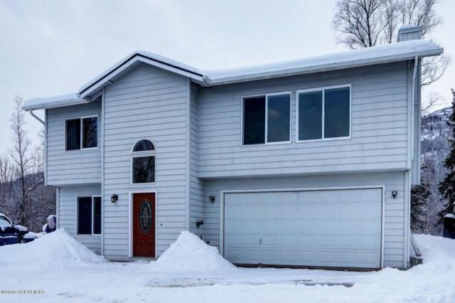 15939 Old Glenn Highway, Chugiak, AK 99567 (MLS #18-3748) :: Northern Edge Real Estate, LLC