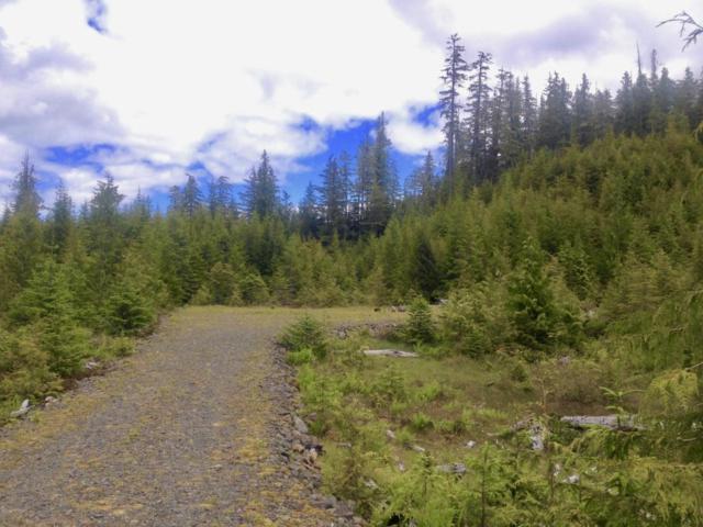 11 Goose Creek Drive, Thorne Bay, AK 99919 (MLS #18-3812) :: Northern Edge Real Estate, LLC