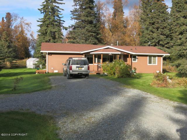 49060 Charlie Brown Drive, Soldotna, AK 99669 (MLS #18-3933) :: Synergy Home Team