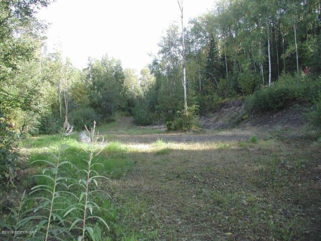 19125 Fish Hatchery Road, Eagle River, AK 99577 (MLS #18-4062) :: Core Real Estate Group