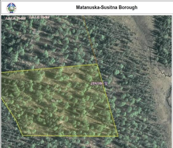 Tct C No Road, Trapper Creek, AK 99683 (MLS #18-4077) :: RMG Real Estate Network | Keller Williams Realty Alaska Group