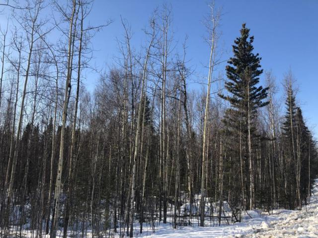 2706 N Windy Bottom Road, Wasilla, AK 99623 (MLS #18-4181) :: Northern Edge Real Estate, LLC