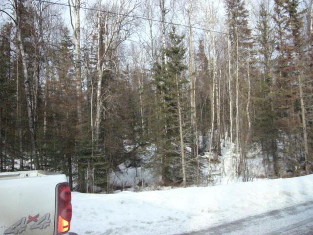 17683 W Erika Drive, Big Lake, AK 99652 (MLS #18-4532) :: Core Real Estate Group