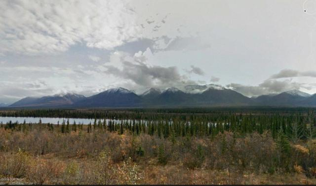 Mi 202 Parks Highway, Cantwell, AK 99729 (MLS #18-4721) :: Team Dimmick