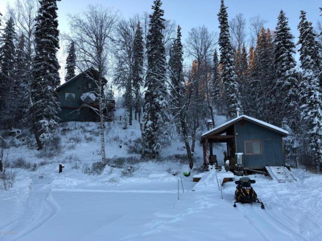 L48C Nancy Lake, Willow, AK 99688 (MLS #18-483) :: Real Estate eXchange
