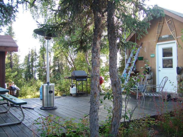 L2 No Road, Glennallen, AK 99588 (MLS #18-5018) :: RMG Real Estate Network | Keller Williams Realty Alaska Group
