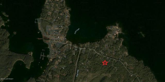 L3 Bowhead Loop Road, Coffman Cove, AK 99918 (MLS #18-5101) :: Northern Edge Real Estate, LLC