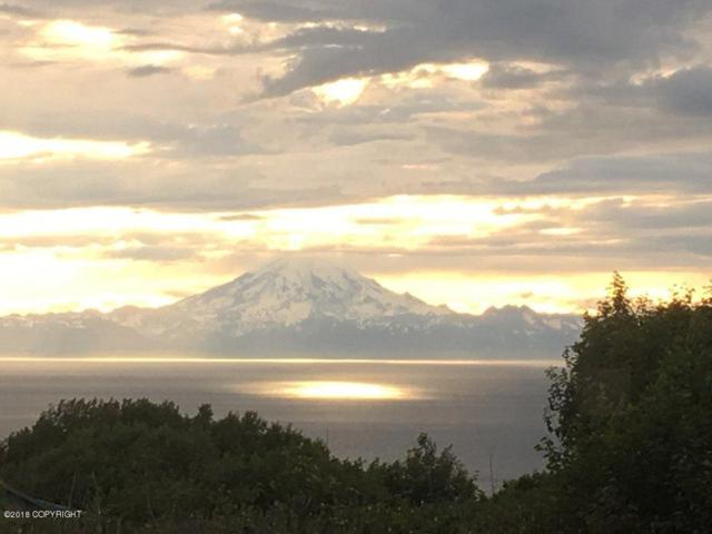 10176 Sunset Drive, Ninilchik, AK 99639 (MLS #18-5138) :: RMG Real Estate Network | Keller Williams Realty Alaska Group