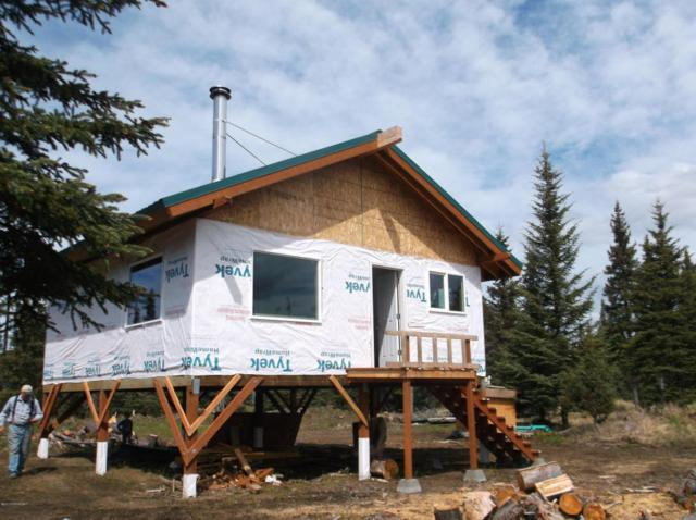 L15-16 Right Bank Street, Anchor Point, AK 99556 (MLS #18-5217) :: Team Dimmick