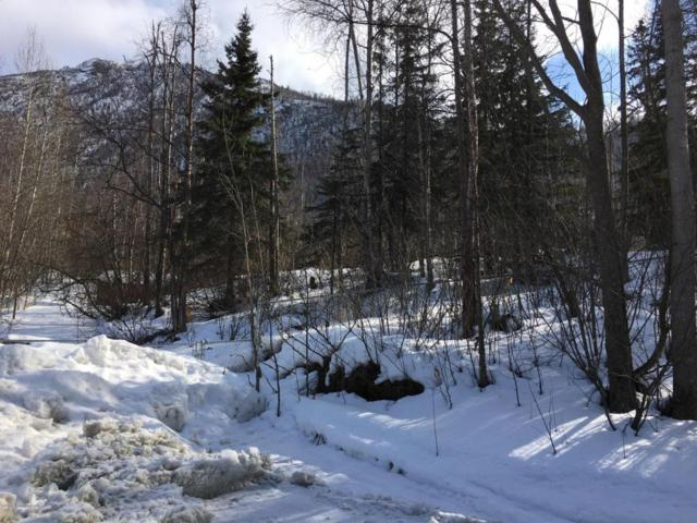 20907 Frosty Drive, Chugiak, AK 99567 (MLS #18-5337) :: Synergy Home Team