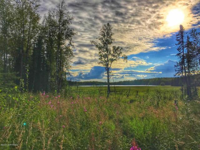 1864 N Pittman Road, Wasilla, AK 99623 (MLS #18-5375) :: RMG Real Estate Network | Keller Williams Realty Alaska Group