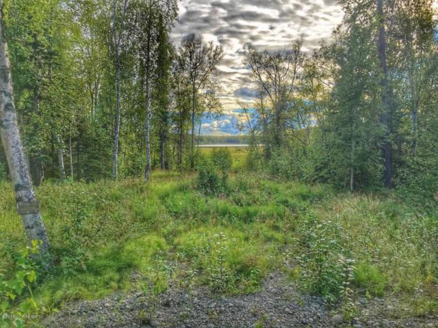 1908 N Pittman Road, Wasilla, AK 99623 (MLS #18-5376) :: RMG Real Estate Network | Keller Williams Realty Alaska Group