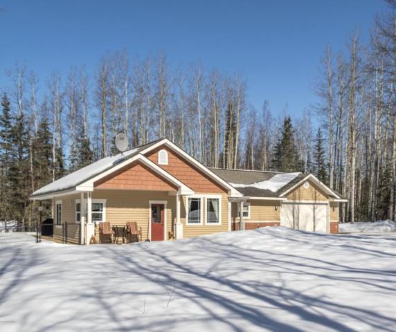 39834 Erlwein Road, Soldotna, AK 99669 (MLS #18-5415) :: Northern Edge Real Estate, LLC