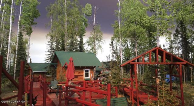 38410 N Salmon Circle, Soldotna, AK 99669 (MLS #18-548) :: Real Estate eXchange