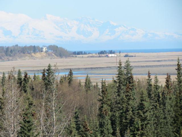 25015 Arctic Fox Road, Kasilof, AK 99610 (MLS #18-5518) :: Northern Edge Real Estate, LLC