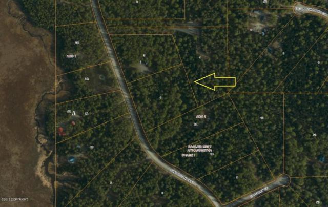 51631 S Woodland Way, Willow, AK 99688 (MLS #18-553) :: Real Estate eXchange