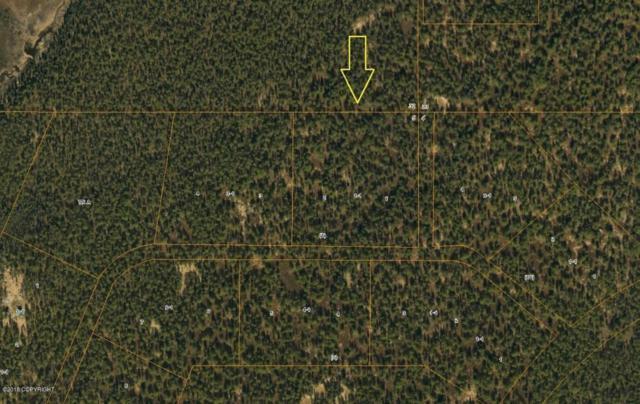 L 1-1 B1 Kasaan Drive, Talkeetna, AK 99676 (MLS #18-5587) :: Northern Edge Real Estate, LLC