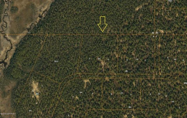 L3-1 B1 Kasaan Drive, Talkeetna, AK 99676 (MLS #18-5589) :: Northern Edge Real Estate, LLC