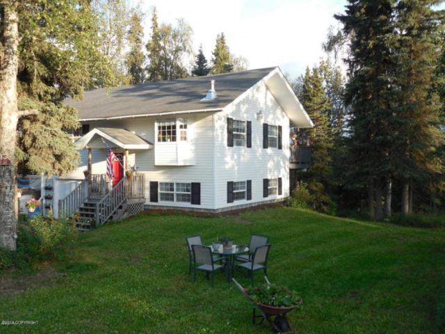 37030 Denise Lake Drive, Soldotna, AK 99669 (MLS #18-5615) :: Northern Edge Real Estate, LLC