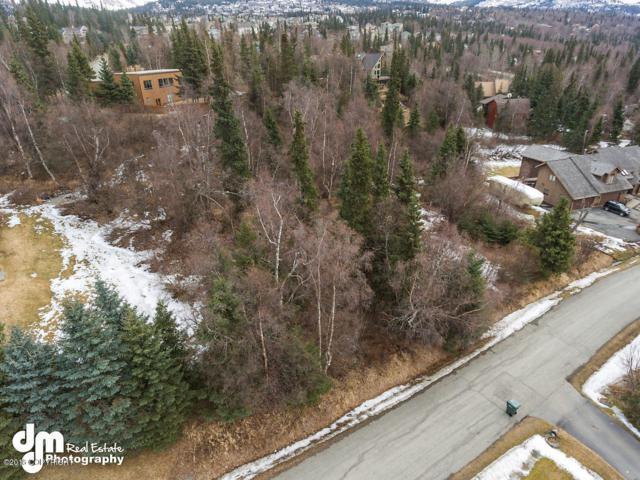 16011 Terracewood Lane, Anchorage, AK 99516 (MLS #18-5648) :: Northern Edge Real Estate, LLC