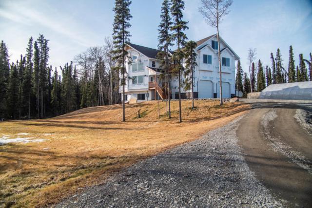 36089 Feuding Lane, Sterling, AK 99672 (MLS #18-5791) :: Northern Edge Real Estate, LLC