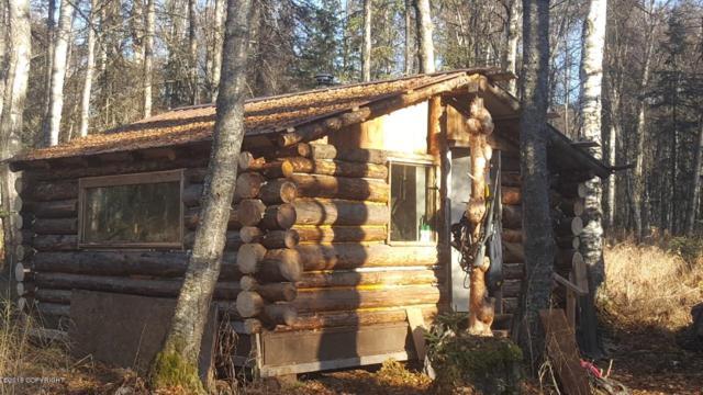 A002 No Road, Talkeetna, AK 99676 (MLS #18-584) :: Real Estate eXchange