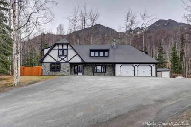 23033 Eagle River Road, Eagle River, AK 99577 (MLS #18-5868) :: Synergy Home Team