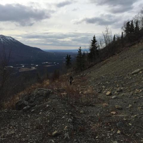 Trac 7&8 Wildflower Circle, Eagle River, AK 99577 (MLS #18-5935) :: Synergy Home Team