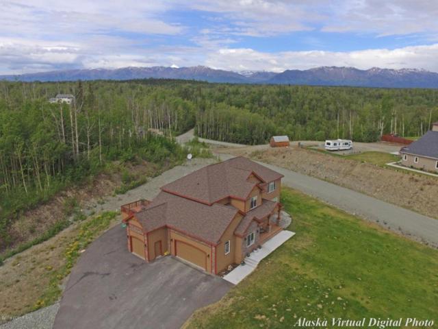 712 S Tundra Flower Lane, Palmer, AK 99645 (MLS #18-5980) :: Northern Edge Real Estate, LLC
