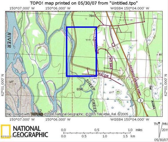 46626 S Merlin Drive, Willow, AK 99688 (MLS #18-6046) :: Northern Edge Real Estate, LLC