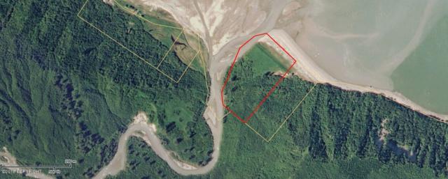 L1A Cook Inlet, Remote, AK 99000 (MLS #18-6128) :: RMG Real Estate Network | Keller Williams Realty Alaska Group